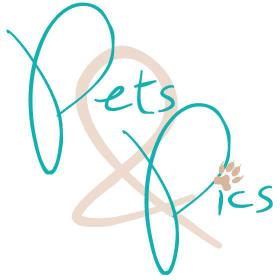 Pets & Pics